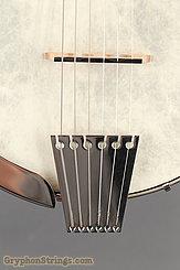 2007 Vega Banjo Senator 6 Image 11