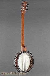 2007 Vega Banjo Senator 6 Image 6