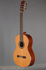 J. Navarro Guitar NC-61 NEW Image 8