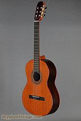 2017 Joel Di Mauro Guitars Guitar #15 Classical Image 8