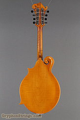Northfield Mandolin NF-F5S Amber NEW Image 5