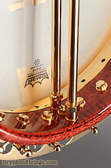 2003 Ome Banjo Gold Monarch Image 15