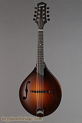 Collings Mandolin MT Mandolin NEW