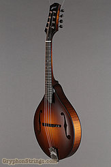 Collings Mandolin MT Mandolin NEW Image 8