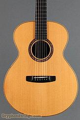 2000 Mark Blanchard Guitar Bristlecone Image 10
