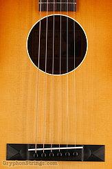 Waterloo Guitar WL-S TR NEW Image 11