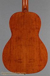 Waterloo Guitar WL-S TR NEW Image 12