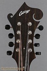 Collings Mandolin MF Mandolin NEW Image 13