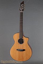 2016 Breedlove Guitar Pursuit Nylon CE Image 1