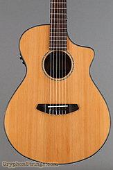 2016 Breedlove Guitar Pursuit Nylon CE Image 10