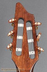 2016 Breedlove Guitar Pursuit Nylon CE Image 13