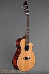 2016 Breedlove Guitar Pursuit Nylon CE Image 2