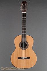 Kremona Guitar F65C NEW Image 9