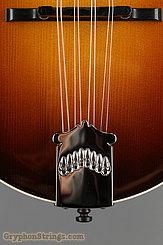Collings Mandolin MF O, Gloss top, Ivoroid binding NEW Image 11