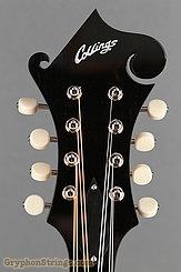 Collings Mandolin MF O, Gloss top, Ivoroid binding NEW Image 13