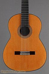 2006 Pavan Guitar TP-20 Image 10