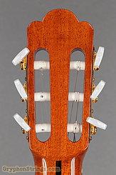 2006 Pavan Guitar TP-20 Image 15