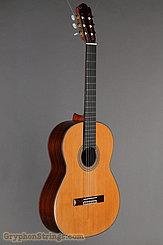 2006 Pavan Guitar TP-20 Image 2