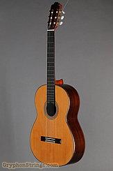 2006 Pavan Guitar TP-20 Image 8