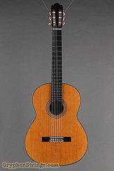 2006 Pavan Guitar TP-20 Image 9