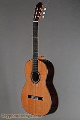 2018 J. Castellucia Guitar Etude E2 Image 8