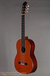 1970 Tamura Guitar P-60 Rosewood/Cedar Image 8