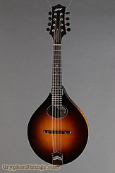 Collings Mandolin MT O, Gloss top Mandolin NEW