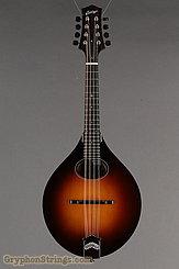 Collings Mandolin MT O, Gloss top Mandolin NEW Image 9