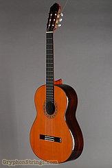 1999 Esteve Guitar 9C Image 8