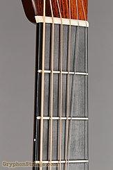 2006 Collings Guitar D2HA Brazilian (aaa grade) Image 18