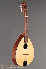 2000 Mid-Missouri Mandolin M-1 Image 2