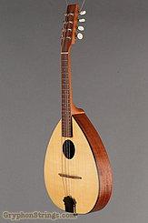 2000 Mid-Missouri Mandolin M-1 Image 6