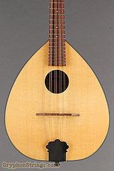2000 Mid-Missouri Mandolin M-1 Image 8