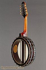 1921 Gibson Banjo-Mandolin MB (Style 3+) Image 3