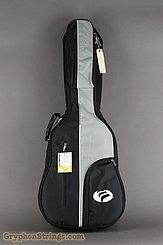 c. 2006 Alvarez Guitar DY62C Image 12