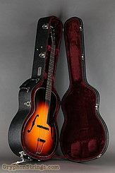 Waterloo Guitar WL-AT, Sunburst NEW Image 11