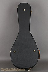 Guardian  Case Guardian Mandolin A case NEW Image 3
