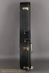 Guardian  Case Guardian Mandolin A case NEW Image 4