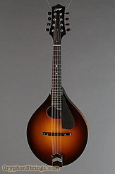 Collings Mandolin MT O, Gloss Top, Pickguard NEW