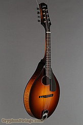 Collings Mandolin MT O, Gloss Top, Pickguard NEW Image 2