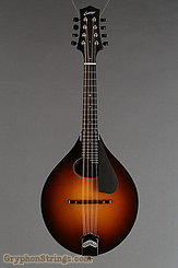 Collings Mandolin MT O, Gloss Top, Pickguard NEW Image 7