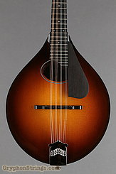 Collings Mandolin MT O, Gloss Top, Pickguard NEW Image 8