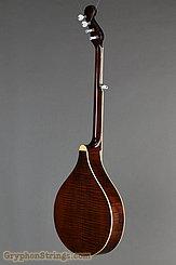 Gold Tone Banjo-Mandolin Banjola NEW Image 3