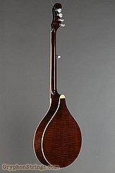 Gold Tone Banjo-Mandolin Banjola NEW Image 5