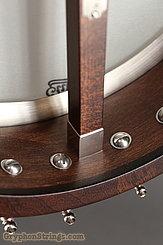 """Bart Reiter Banjo Bacophone 11"""", Mahogany neck NEW Image 10"""