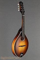 Collings Mandolin MT O, Satin Sunburst, Ivoroid Binding Mandolin NEW Image 2