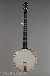 "Waldman Banjo Chromatic 12"" NEW Image 1"