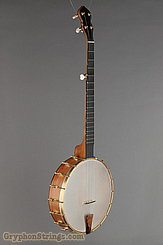 "Waldman Banjo Chromatic 12"" NEW Image 2"
