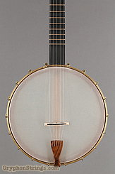 "Waldman Banjo Chromatic 12"" NEW Image 8"