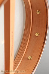 "Waldman Banjo Cello 12"" NEW Image 11"